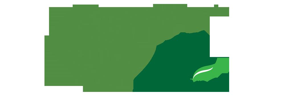 Logotipo EP 40 Anos