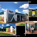 mosaic agrícolas 2019